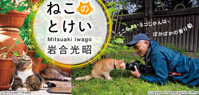 Mitsuaki_iwago_title